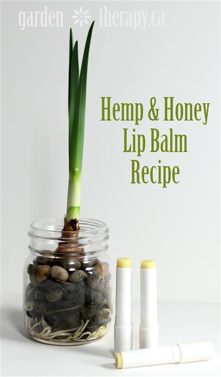 hemp-lip
